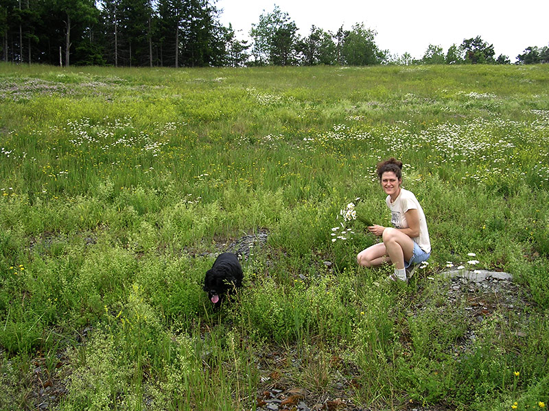 Lindsay in a field picking flowers with her dog, Beau